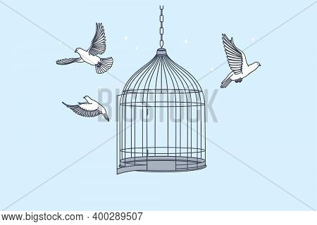 New Opportunities, Freedom, Mental Development Concept. Open Cage With Flying From Inside Doves Bird