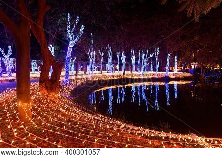 Lighting Decorate On The Tree In Lighting Festival Showing Countdown Event