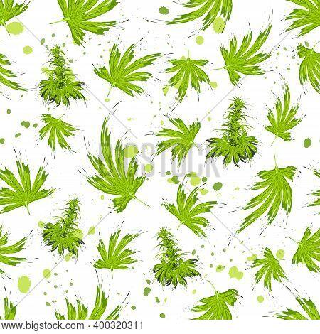 Seamless Pattern In Brush Style Cannabis Leaves. Cannabis Bush Of Hemp Or Marijuana Or Hashish Or Ma
