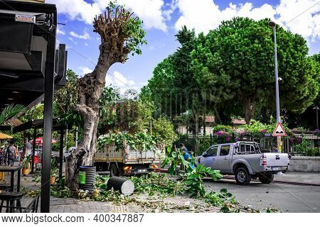 Alanya, Turkey - October 22, 2020: Pruning Trees By City Utilities On A Street In Alanya. A Tree Wit