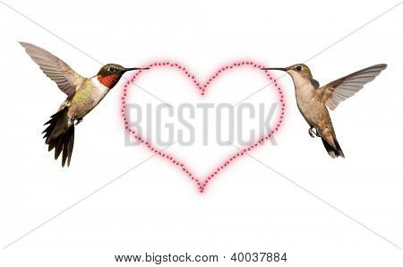 Two Hummingbirds carrying a Valentine's Day heart - isolated on white