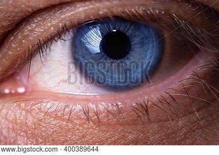 Close Up Blue Human Eye. Handsome Mans Eye.