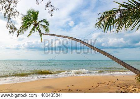 Beach Lipa Noi On Koh Samui In Thailand, Paradise, Sunny Beach, Coconuts And Palm Trees, Sunbathing