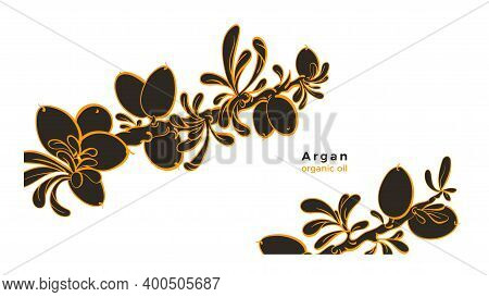 Argan Tree. Vector Template. Art Line Sketch Berry, Leaves. Graphic Illustration On White Background