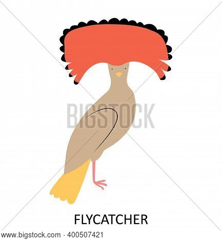 Illustration With Tropic Bird - Amazonian Crowned Flycatcher. Cute Cartoon Character