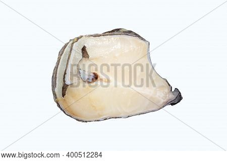 Catfish.a Piece Of Fresh Catfish Fish On A White Background.catfish Steak.