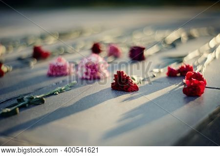 Carnations On The Grave. Withered Flowers On A Marble Tombstone In The Cemetery. Blurry Background W