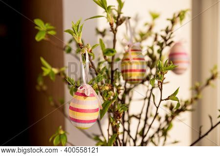 Festive Colorful Easter Eggs.a Bunch Of Purple, White And Dotted Easter Eggs Hanging From Tree Branc