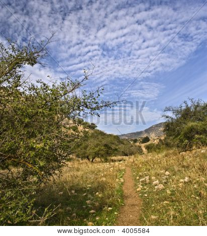 Path In A Valley