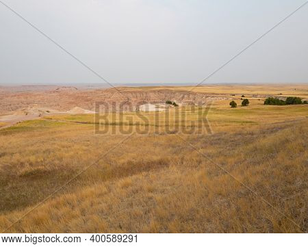 Dried Grass In A Mixed Grass Grassland In Badlands National Park In South Dakota. An Eroded Canyon I