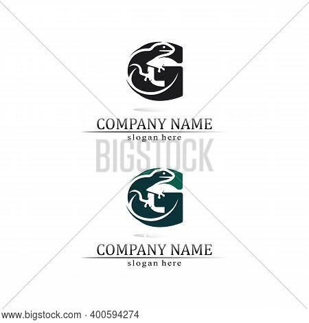 Animal Vector Lizard Salamander Gecko Crocodile And Reptiles Design Logo