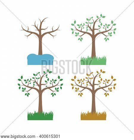 Vector Illustration Of The Four Seasons Trees Flat Style For Kids Stock Vector Illustration Summer,