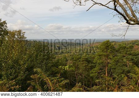 Woodland And Countryside At The Devill's Punchbowl, Hindhead, Surrey, England