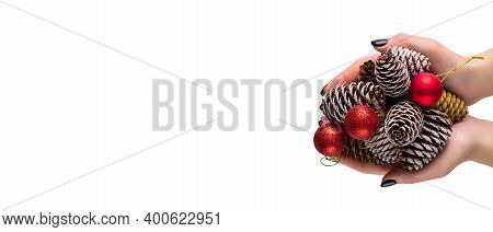 Female Hands Holding A Many Pine Cones And Red Christmas Balls. Woman Holding Pine Cone, Closeup. Ch