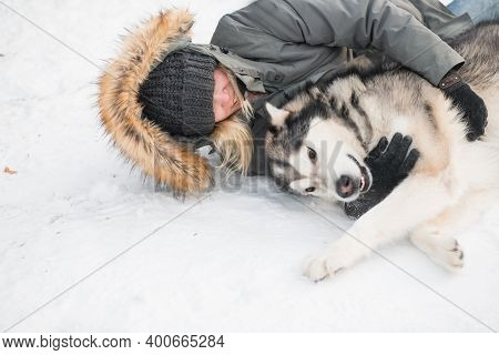 Alaskan Malamute Lying And Hugging With Woman In Winter Forest. Close Up.