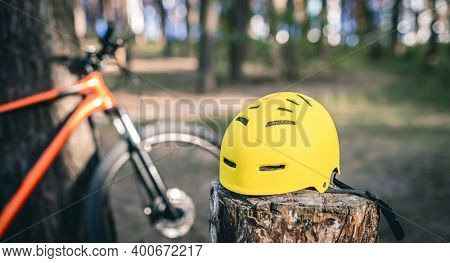 Bicycle helmet and bike in pine forest