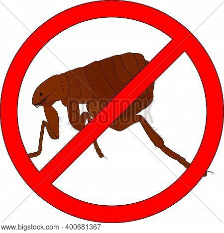Prohibition Cartoon Sign Stop Fleas Insect Icon With Black Outline Isolated On White Background. War