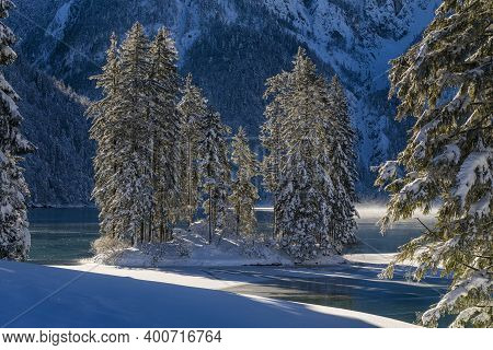 Some Pines In An Islet In The Frozen Lake Of Predil, Tarvisio, Italy
