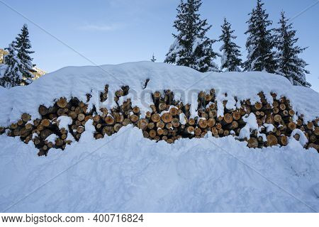 The Piles Of Wooden Logs Covered With Snow In Winter