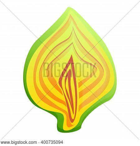 Half Cutted Artichoke Icon. Cartoon Of Half Cutted Artichoke Vector Icon For Web Design Isolated On