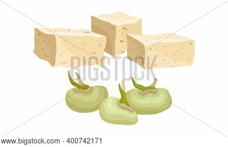 Tofu Or Soy Cheese And Raw Soy Beans Vector Set