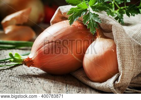 Germinated Yellow Onions In A Burlap Sack, Green Onions Feathers, Parsley On The Old Wooden Backgrou