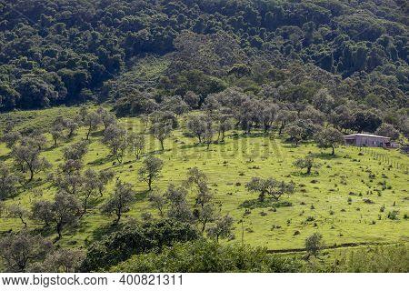 Rural Landascape, Brazil