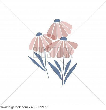 Daisy Wildflower Flat Vector Illustration. Marguerite Silhouette Isolated White Background. Scandina