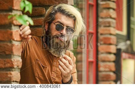 Deal With Nerves. Smoke Nicotine Addicted. He Is Heavy Smoker. Bearded Man In Glasses Relax With Cig