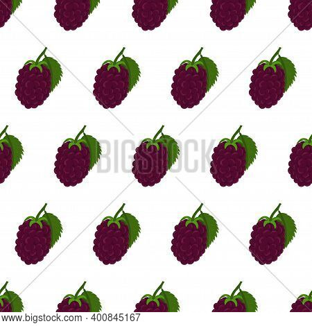 Blackberry With Green Leaves Seamless Pattern On White Backdrop. Autumn Forest Nature. Vector Fruits