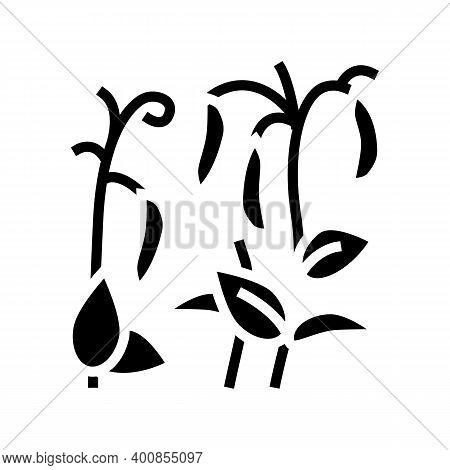 Plant Peas Glyph Icon Vector. Plant Peas Sign. Isolated Contour Symbol Black Illustration