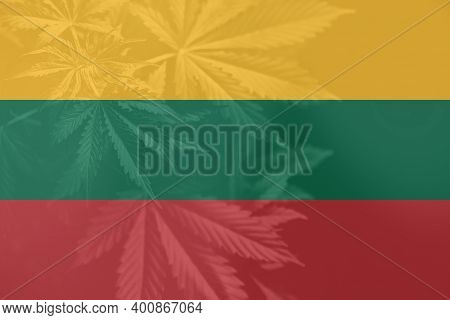 Medical Cannabis In The Lithuania. Cannabis Legalization In The Lithuania. Leaf Of Cannabis Marijuan