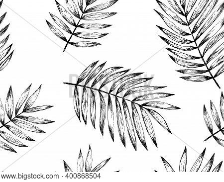 Black And White Palm Leaves Seamless Pattern In Vintage Graphic Style