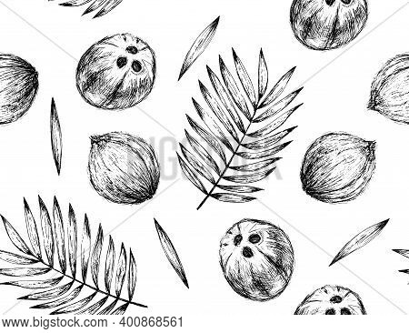 Coconut And Palm Leaves Seamless Pattern In Graphic Style