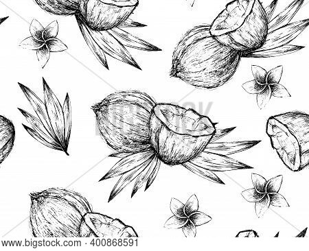 Black And White Vintage Coconut Graphic Seamless Pattern, Hand-drawn Decorative Illustration