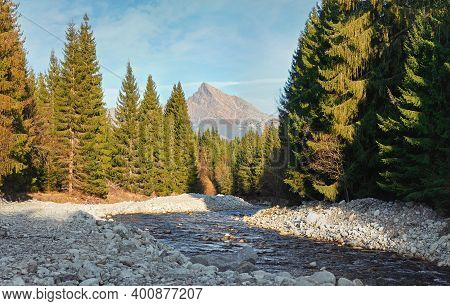 Forest River Bela With Small Round Stones And Coniferous Trees On Both Sides, Sunny Day, Krivan Peak