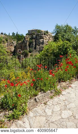 View Of The Tajo Gorge And Flower Fields Near The Puento Nuevo (new Bridge) In Ronda, Spain
