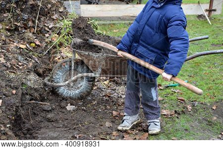 Young Children Help To Distribute Soil From Compost. They Load A Dad's Shovel Into Wheelbarrow To Fi