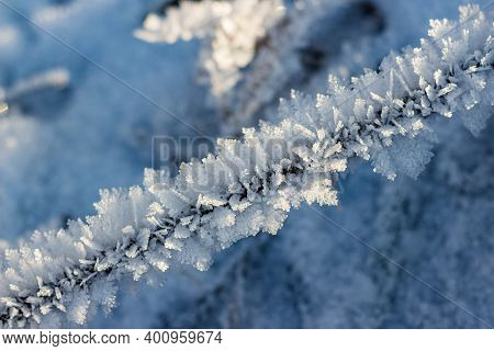 Large Beautiful Growths Of Crystalline Frost On The Grass. Frosty Winter Morning