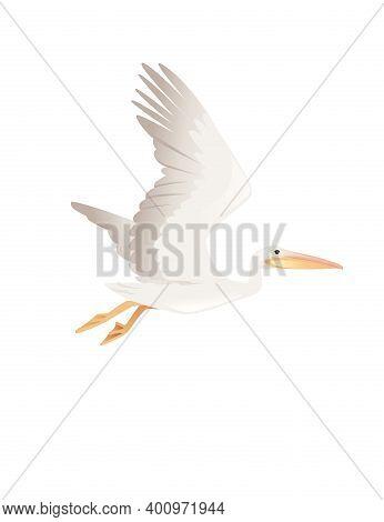 Pelican Genus Large Water Bird Cartoon Animal Design Big White Bird Flying With Orange Beak Flat Vec