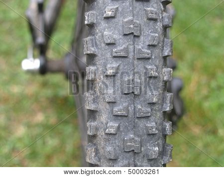 Back Wheel Treads of a Mountain Bike