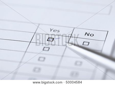 business, education and interview concept - yes or no questionnaire or form