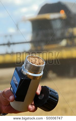 An Agriculturist Holds A Wheat In Hygrometer