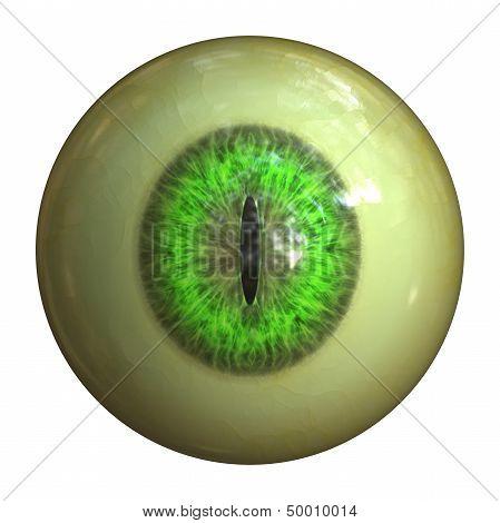 Eyeball Of Monster