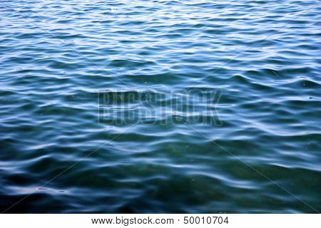 Blue Green Sea Surface Background With Fishes Full Frame Composition