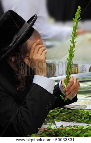 BNEI-BRAK, ISRAEL - SEPTEMBER 22: The young religious Jews in a hat are choosing myrtle at the market on the eve of Sukkot September 22, 2010 in Bnei Brak, Israel. This was Sukkoth market