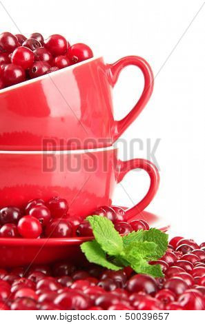 Ripe red cranberries in cups, isolated on white