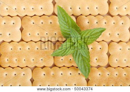 Cookies texture closeup pattern background with mint leaves