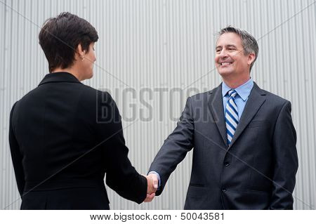 Businesswoman Shaking Hands With Businessman