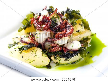 Salad of scallops and octopus. On a white background.